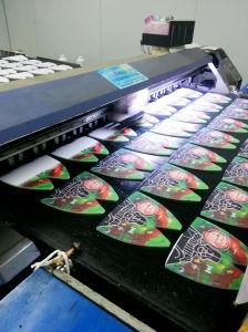 Blet Pigment Digital Printer for Cotton Fabric pictures & photos