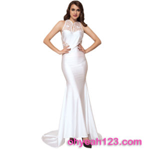Best Selling Sleeveless Evening Dress for Fat Women pictures & photos