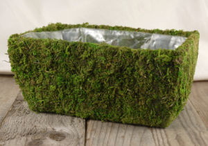 Square Moss Planter 11in pictures & photos