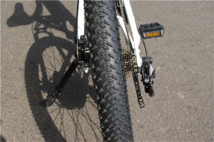 High Speed Electric Bike Rear Hub Motor Bicycle with Lithium Battery pictures & photos