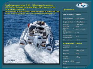 Liya 580 Bateau Semi-Rigide Rib a Vendre 10 Places pictures & photos