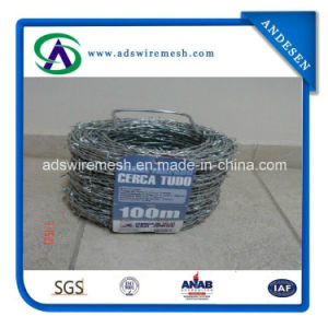 12*14gauge Galvanized Double Twist Barbed Wire pictures & photos