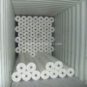 PP Nonwoven White Color Fabric for Hospital and Hygiene Using pictures & photos