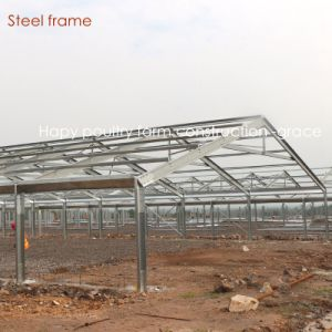 Steel Structure Poultry Farm House with Farming Equipment pictures & photos