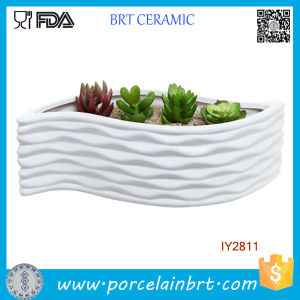 Modern White Ceramic Leaf Shape Design Flower Container pictures & photos