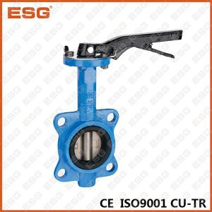 Manual Butterfly Valve 301 Series pictures & photos