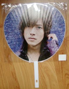 Customized Printed Cheap Bamboo Hand Fan for Sake pictures & photos