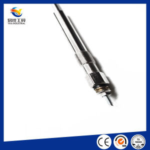 Ignition System Competitive High Quality Auto Engine Ignition Glow Plug pictures & photos