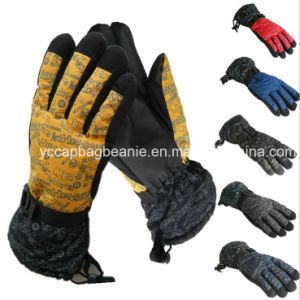 Custom Sports Ski Heated Gloves pictures & photos