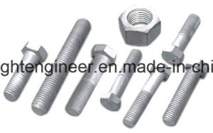 Hex Hot DIP Galvanization Bolts pictures & photos