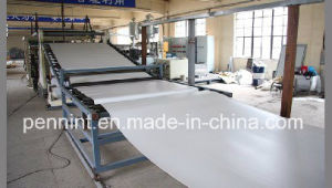 Chinese Polyester PVC Waterproofing Membrane Factory pictures & photos