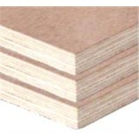 18mm High Quality Best Price Bintangor Plywood Lumber pictures & photos