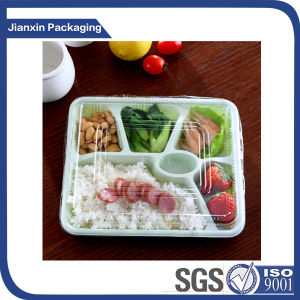 Transparent Plastic Food Fruit Tray Container pictures & photos