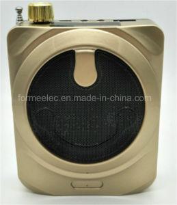 TF Card USB FM Mini Radio Amplifier Portable Radio pictures & photos