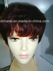 China Supplier Brazilian Human Hair Full Lace Wig pictures & photos