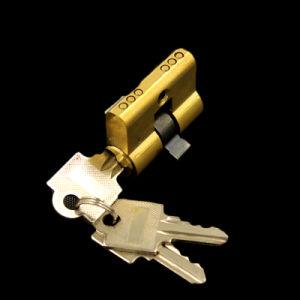 40mm Brass Lock Cylinder High Quanlity Door Lock pictures & photos