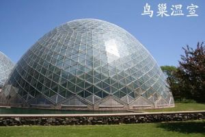 Low Cost Modern Steel Space Truss Frame Geodesic Dome House for Sale