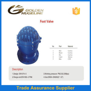 Cast Stee &Ductile Iron Flanged Foot Valve pictures & photos
