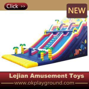 Good Generous Funny Large Outdoor Inflatable Slide (C1226-2) pictures & photos