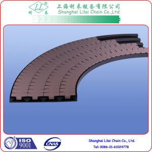 Plastic Conveyor Chain Corner Tracks for Conveying System (880TAB-K325-R500-100-4) pictures & photos