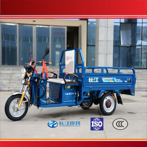 China Popular Cargo Auto Tricycle for The Disabled