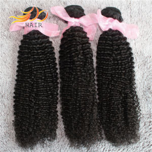 8A High Quality Peruvian Virgin Human Hair Kinky Curl Tanglefree Hair Wefts pictures & photos