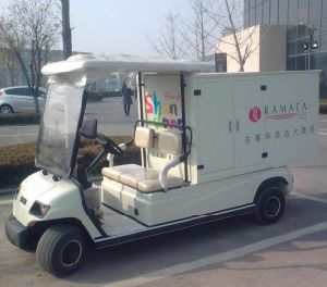 Factory 2 Seat Electric Utility Vehicle (Lt-A2. GC) pictures & photos