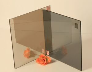 4mm Euro Grey Tinted Refletive Glass