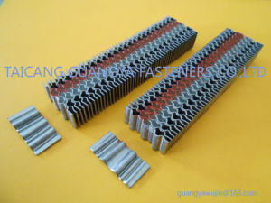 Stanley Type CF10 Corrugated Fasteners Nails pictures & photos