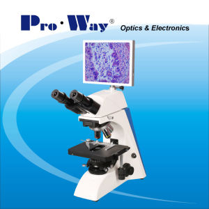 Professional Video Digital LCD Screen Biological Microscope with Software (PW-BK5000LCD) pictures & photos