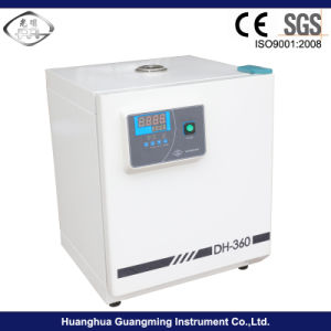 Laboratory Constant Temperature Incubator pictures & photos