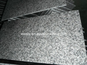 Wholesale Light Grey Granite G623 Slab for Sale pictures & photos