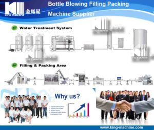 Automatic Plastic Bottle Water Filling Packaging Machine Price pictures & photos