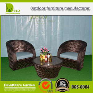 Outdoor Furniture Sofa Set, Garden Futniture Sofa, Patio Furniture Sofa, Rattan Sofa, Wicker Sofa pictures & photos