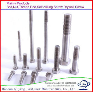 304 316 Stainless Steel Hex Bolt pictures & photos
