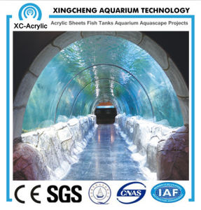 Cast Customized Acrylic Tunnel for Aquarium/Acrylic Aquarium Tunnel/Larger Acrylic Tunnel pictures & photos