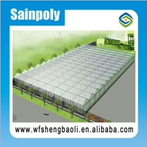 Low Cost Multi Span Used Commercial Greenhouses for Sale pictures & photos