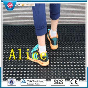 Acid Resistant Rubber Mat/Anti-Bacteria Rubber Mat/Anti-Fatigue Mat