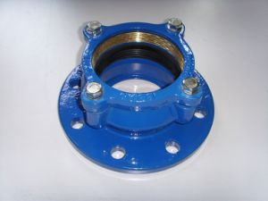HDPE Pipe Flange Adaptor pictures & photos