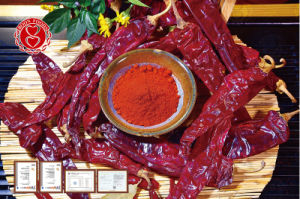 Sweet Paprika Pods pictures & photos