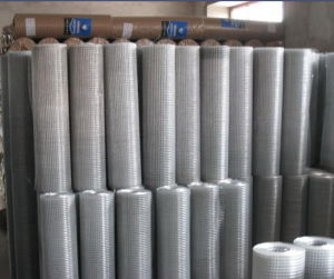 CE and SGS Marks Galvanized Iron Square Wire Mesh (anjia-603) pictures & photos