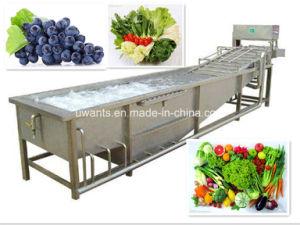 Multi-Function Vegetable Fruit Washing Machine pictures & photos