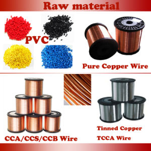 Electric Wire Copper Conduct PVC Insulation 300/500V 450/750V Power Cable pictures & photos