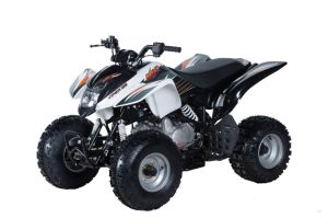 Kayo Sports ATV Quad 125cc with Semi-Automatic Gears for Teenager