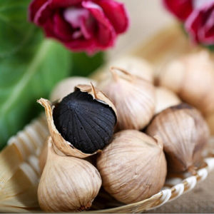 Black Garlic Oil and Refined pictures & photos