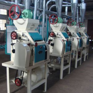 Flour Mill Manufacturer (6FTS-28 for wheat/maize/corn) pictures & photos