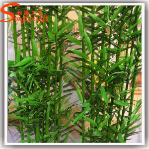 Guangzhou Supplier Artificial Lucky Bamboo Plants Tree for Decoration pictures & photos