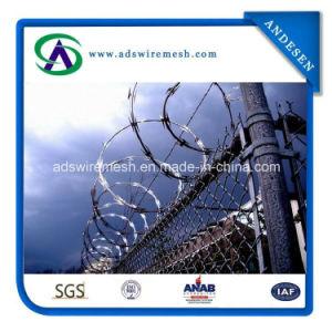 Military Cbt-65 Razor Wire Concertina Razor Wire pictures & photos