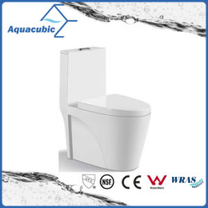 One Piece Dual Flush Ceramic Toilet in White (ACT7911) pictures & photos