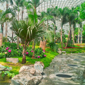 Low Cost Tourism Greenhouse for Sightseeing with Good Quality